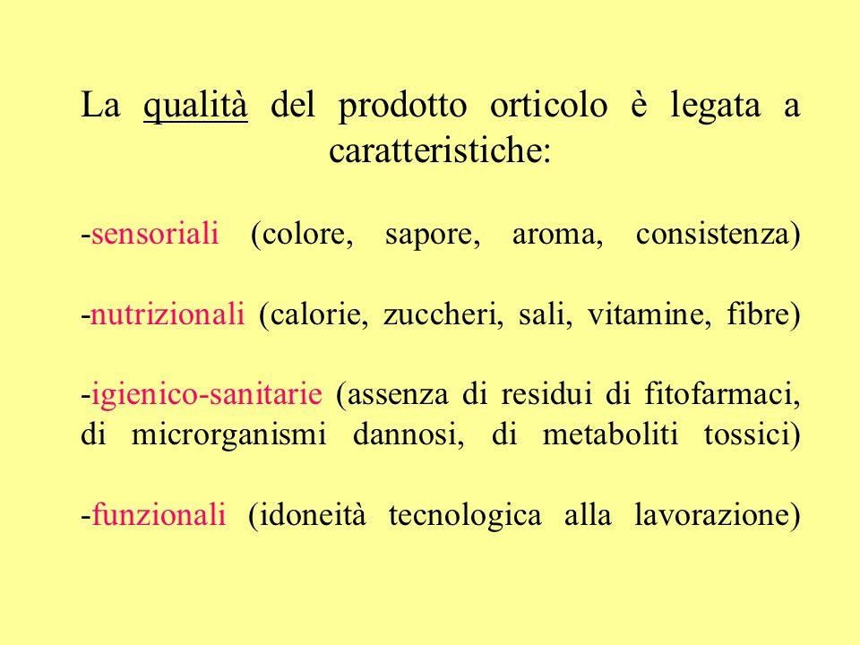 La qualità del prodotto orticolo è legata a caratteristiche: -sensoriali (colore, sapore, aroma, consistenza) -nutrizionali (calorie, zuccheri, sali, vitamine, fibre) -igienico-sanitarie (assenza di residui di fitofarmaci, di microrganismi dannosi, di metaboliti tossici) -funzionali (idoneità tecnologica alla lavorazione)