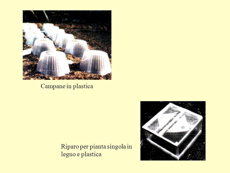 Campane in plastica Riparo per pianta singola in legno e plastica