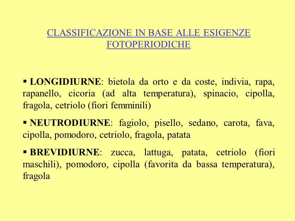CLASSIFICAZIONE IN BASE ALLE ESIGENZE FOTOPERIODICHE