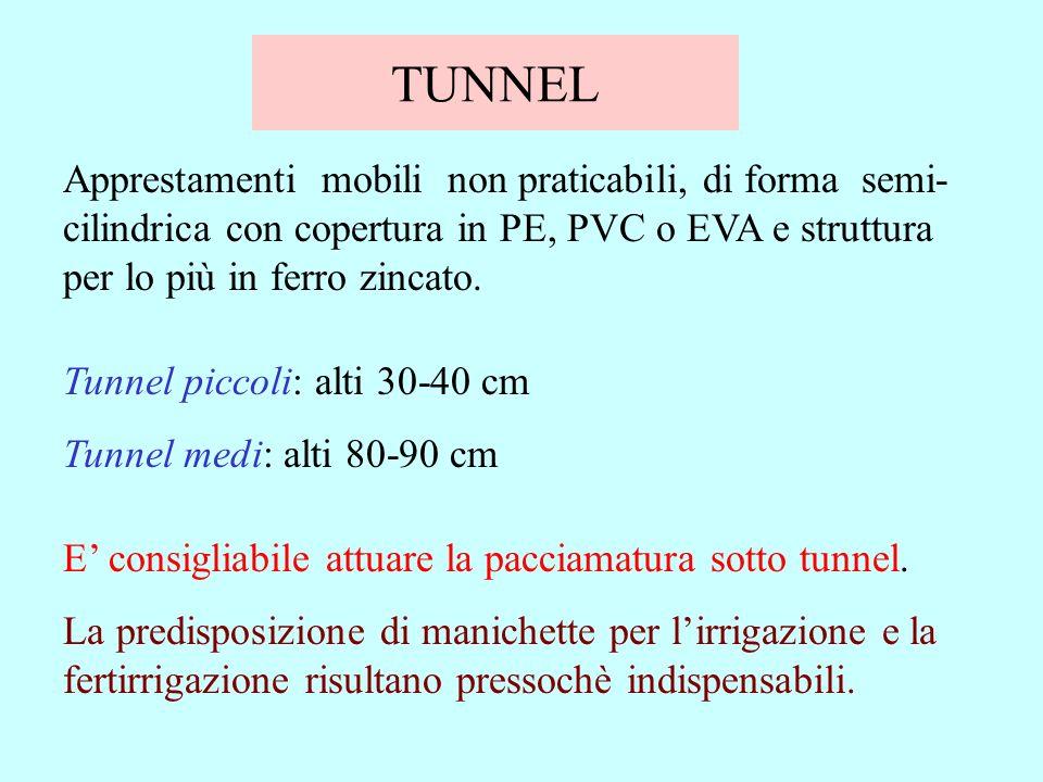 TUNNEL Apprestamenti mobili non praticabili, di forma semi-cilindrica con copertura in PE, PVC o EVA e struttura per lo più in ferro zincato.