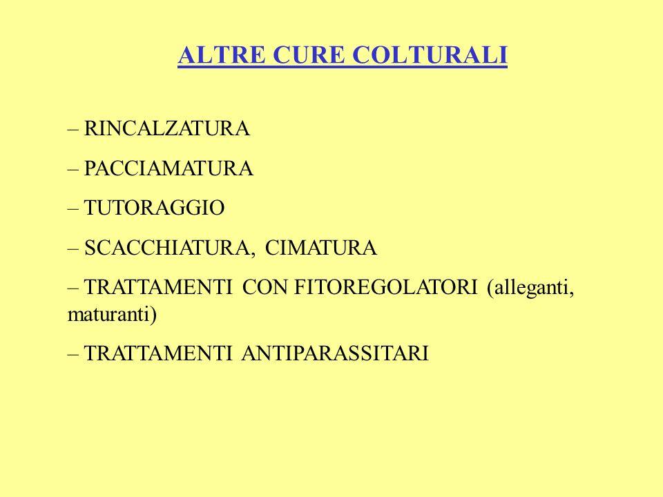 ALTRE CURE COLTURALI RINCALZATURA PACCIAMATURA TUTORAGGIO
