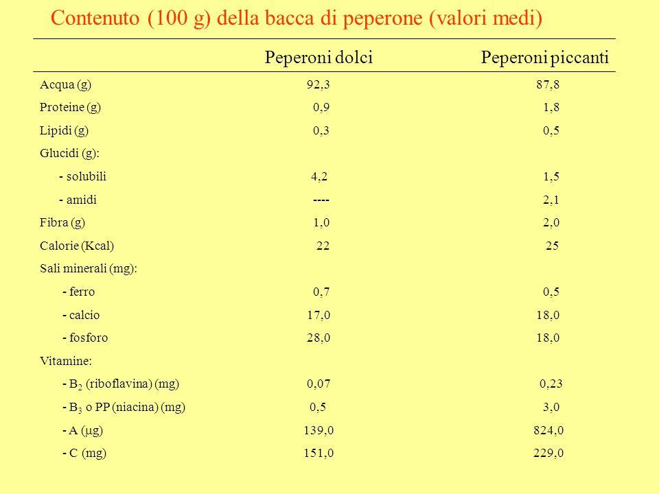 Contenuto (100 g) della bacca di peperone (valori medi)
