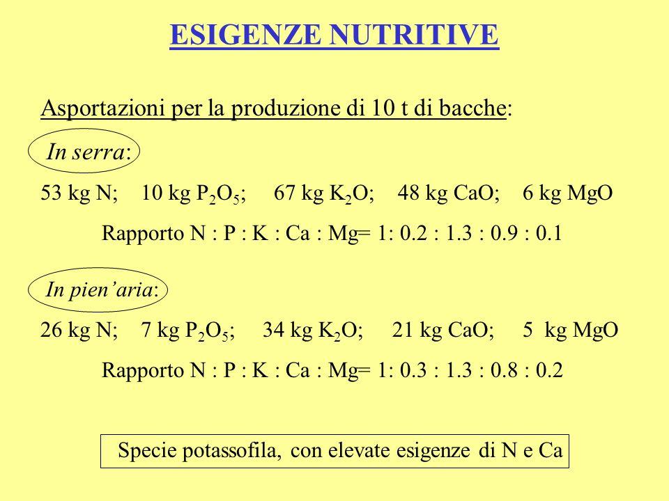 Specie potassofila, con elevate esigenze di N e Ca