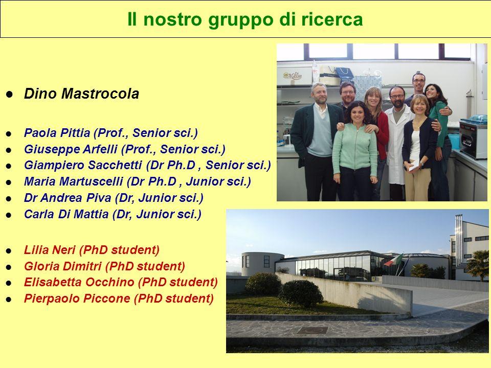 Il nostro gruppo di ricerca