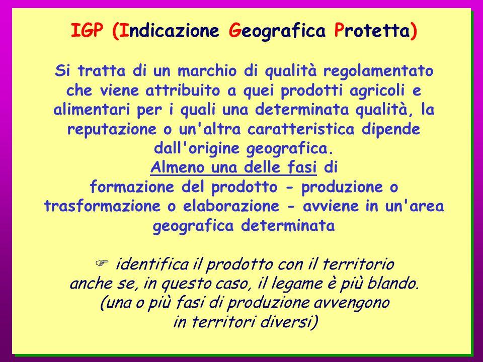 IGP (Indicazione Geografica Protetta)