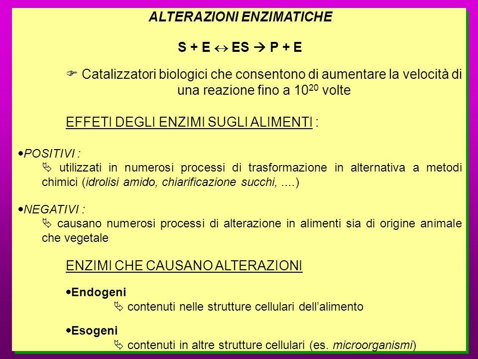 ALTERAZIONI ENZIMATICHE