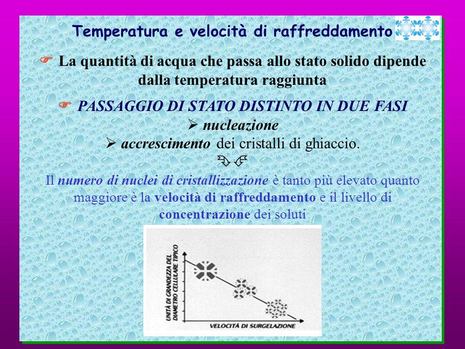Temperatura e velocità di raffreddamento