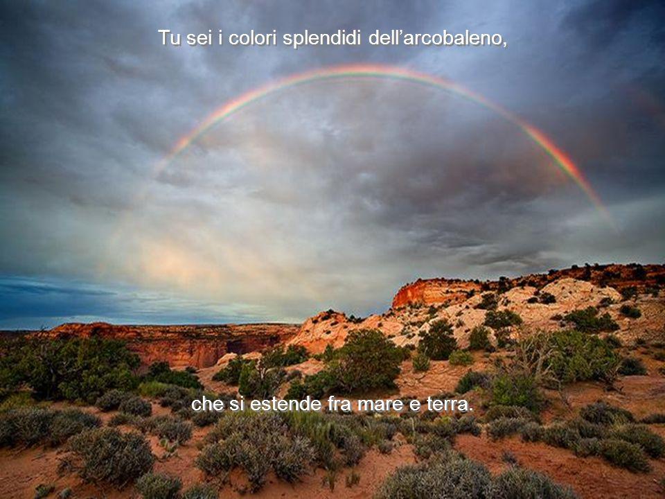 Tu sei i colori splendidi dell'arcobaleno,