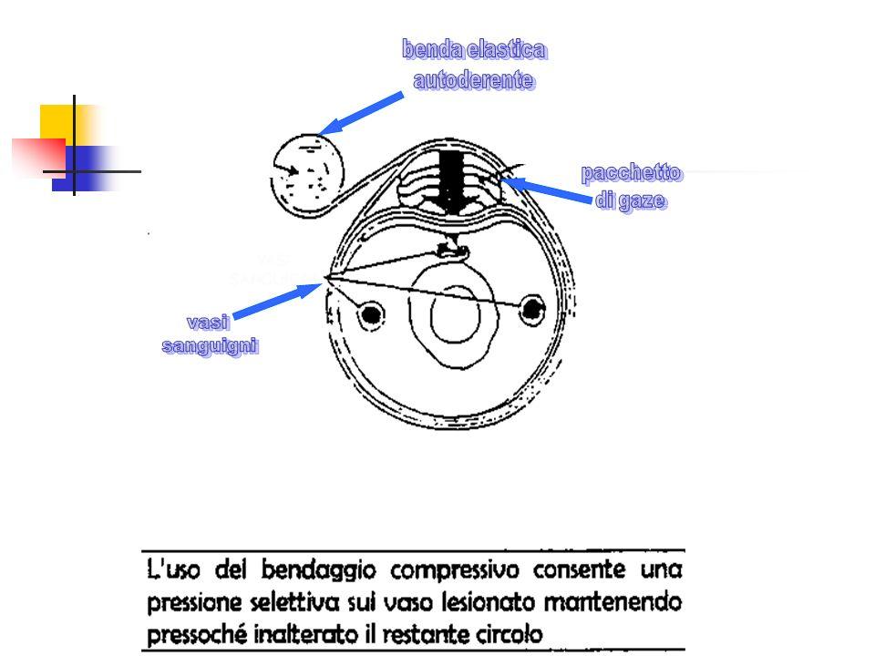 benda elastica autoderente pacchetto di gaze vasi sanguigni