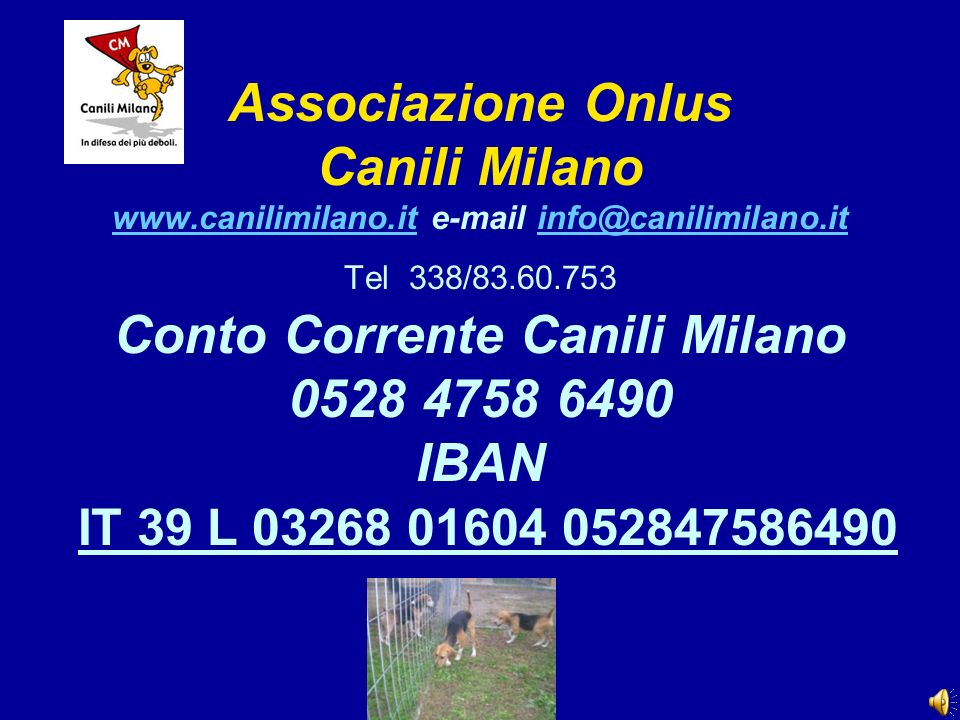 Associazione Onlus Canili Milano www. canilimilano