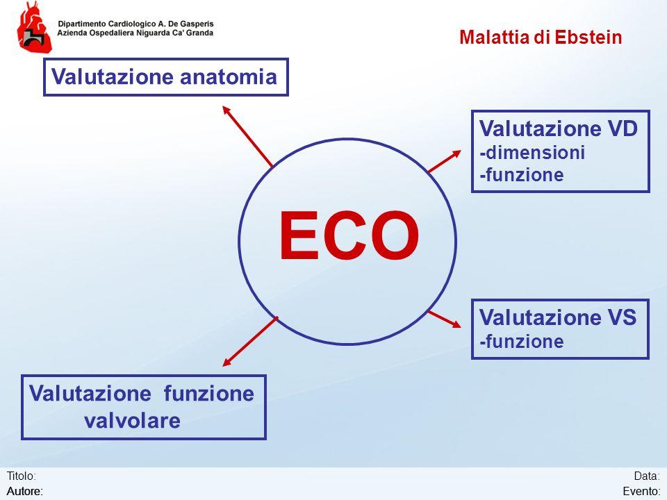 ECO Valutazione anatomia Valutazione VD Valutazione VS