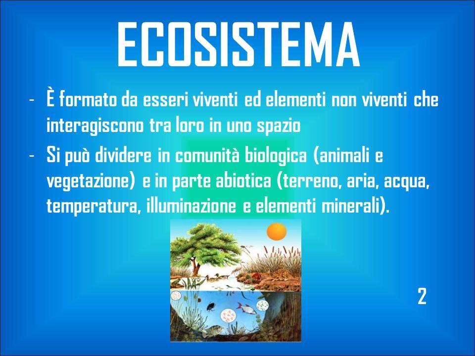 ECOSISTEMA È formato da esseri viventi ed elementi non viventi che interagiscono tra loro in uno spazio.