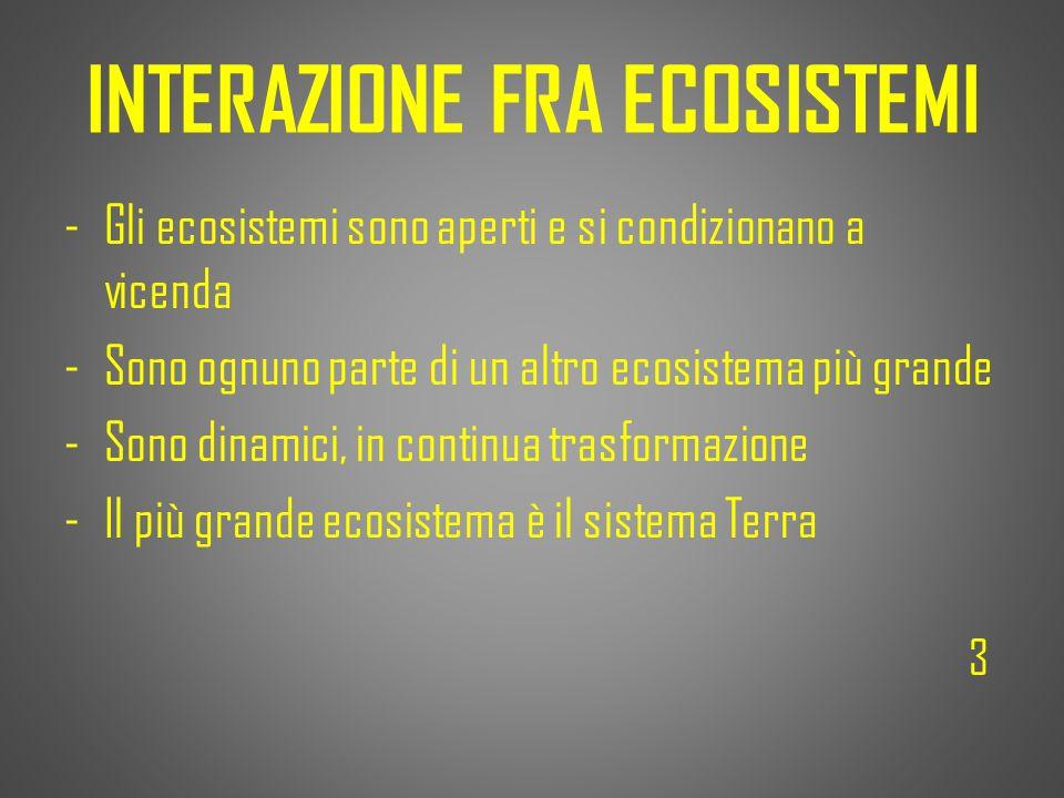 INTERAZIONE FRA ECOSISTEMI