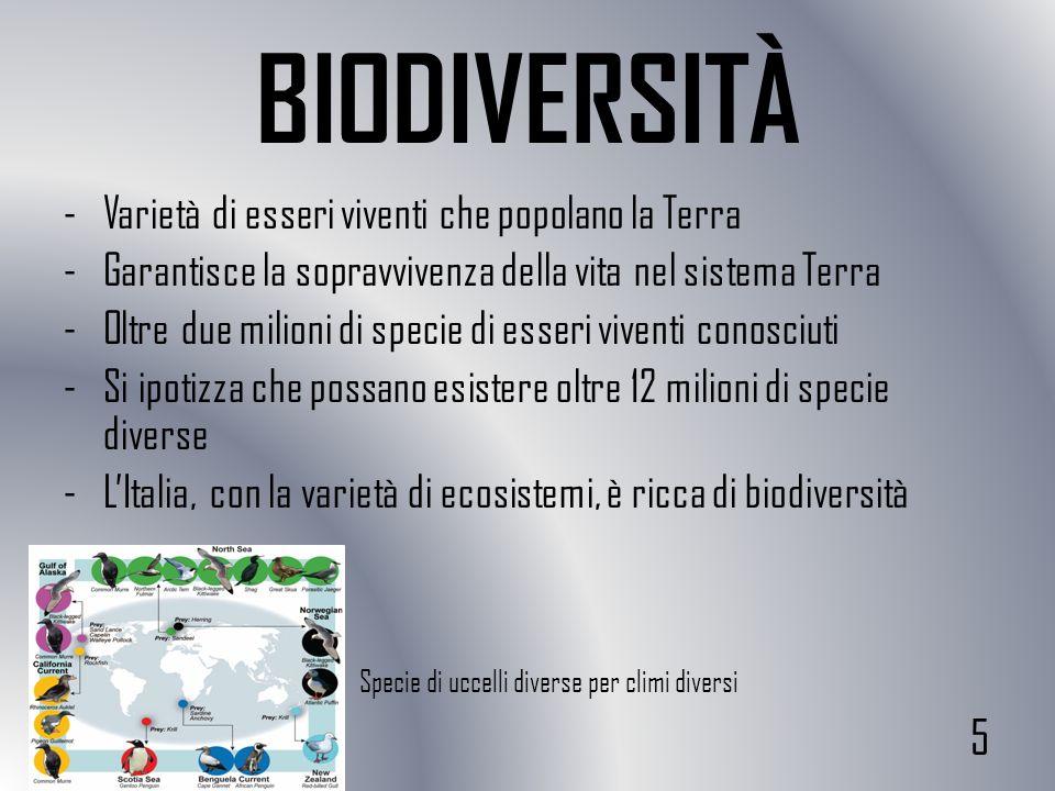 BIODIVERSITÀ 5 Varietà di esseri viventi che popolano la Terra