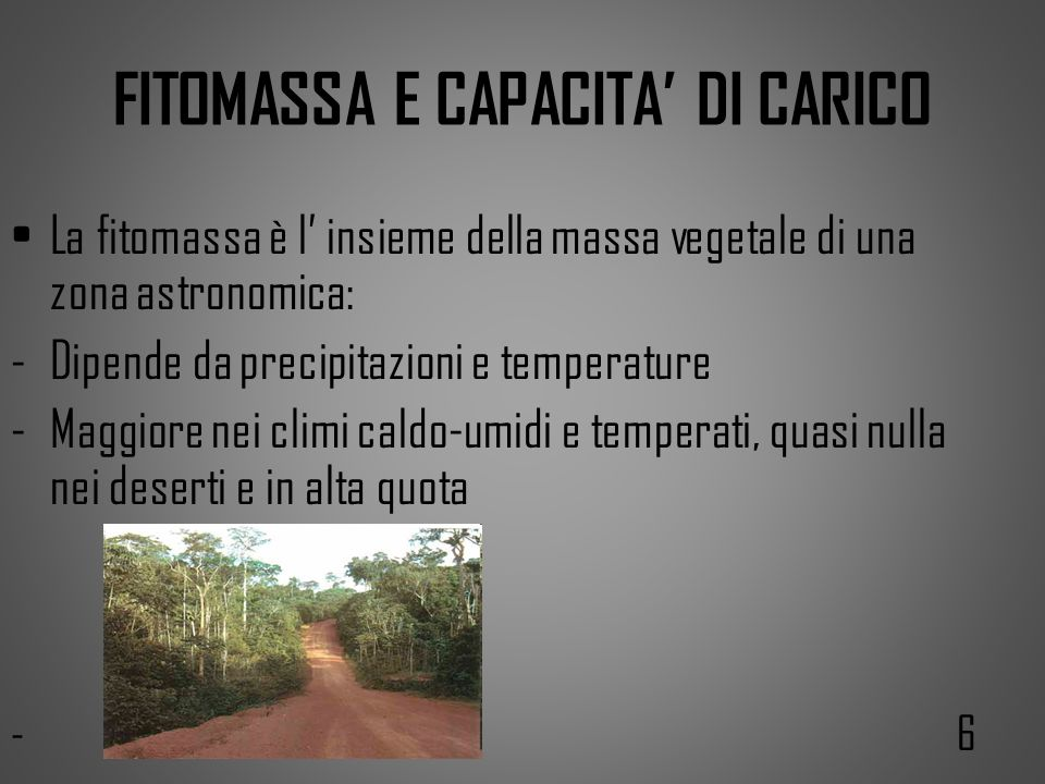 FITOMASSA E CAPACITA' DI CARICO