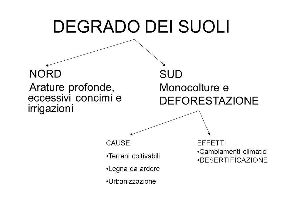 DEGRADO DEI SUOLI SUD Monocolture e DEFORESTAZIONE NORD