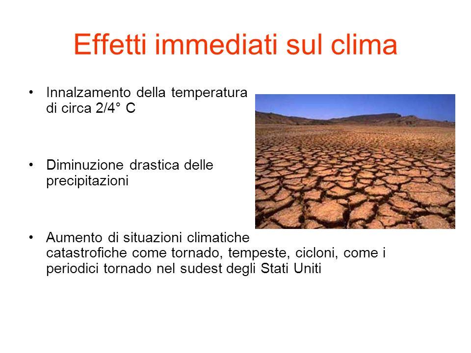 Effetti immediati sul clima