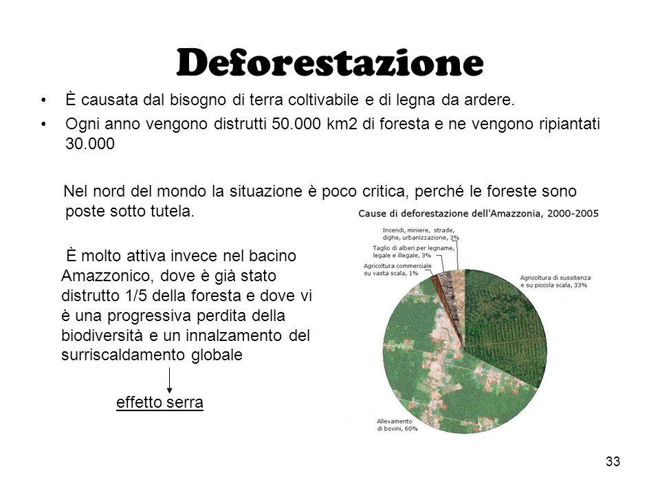 Deforestazione È causata dal bisogno di terra coltivabile e di legna da ardere.
