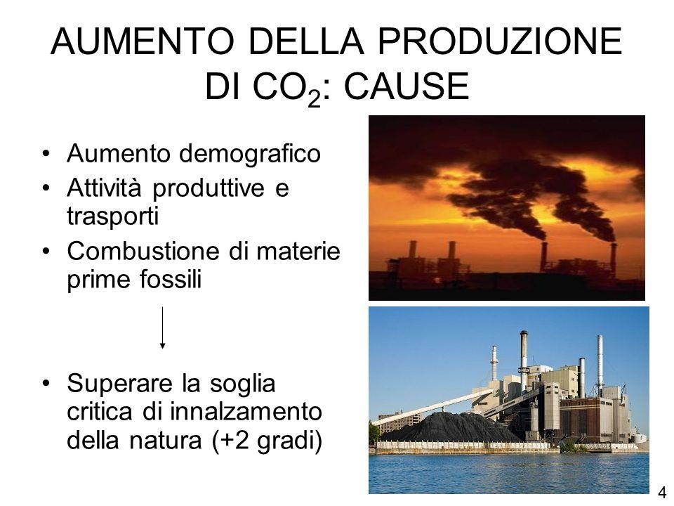 AUMENTO DELLA PRODUZIONE DI CO2: CAUSE