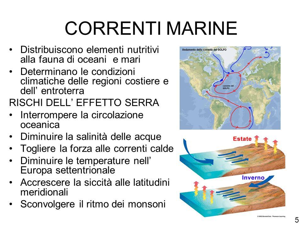 CORRENTI MARINE Distribuiscono elementi nutritivi alla fauna di oceani e mari.
