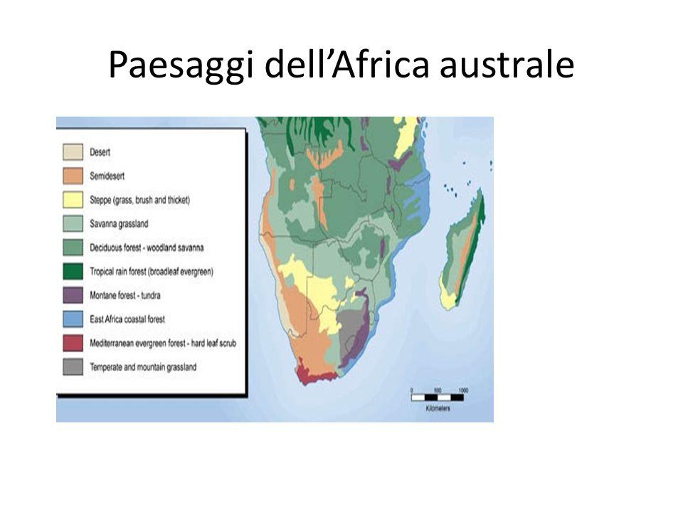 Paesaggi dell'Africa australe