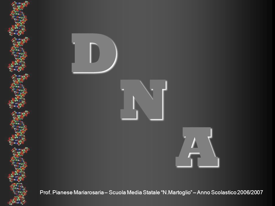 D N A Prof. Pianese Mariarosaria – Scuola Media Statale N.Martoglio – Anno Scolastico 2006/2007