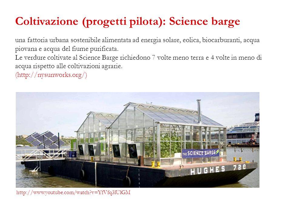Coltivazione (progetti pilota): Science barge
