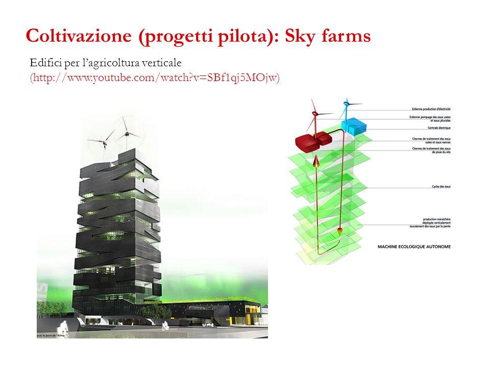 Coltivazione (progetti pilota): Sky farms