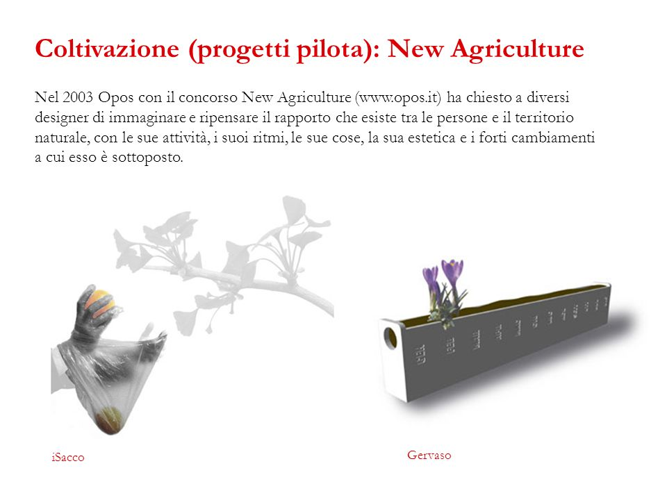 Coltivazione (progetti pilota): New Agriculture