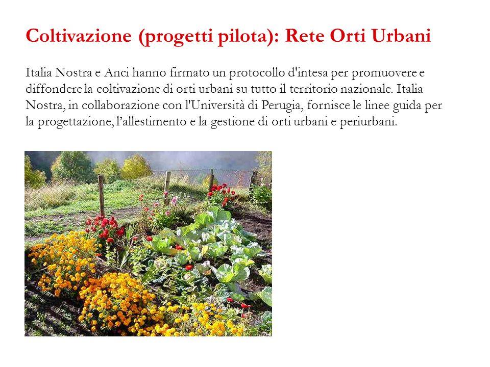 Coltivazione (progetti pilota): Rete Orti Urbani