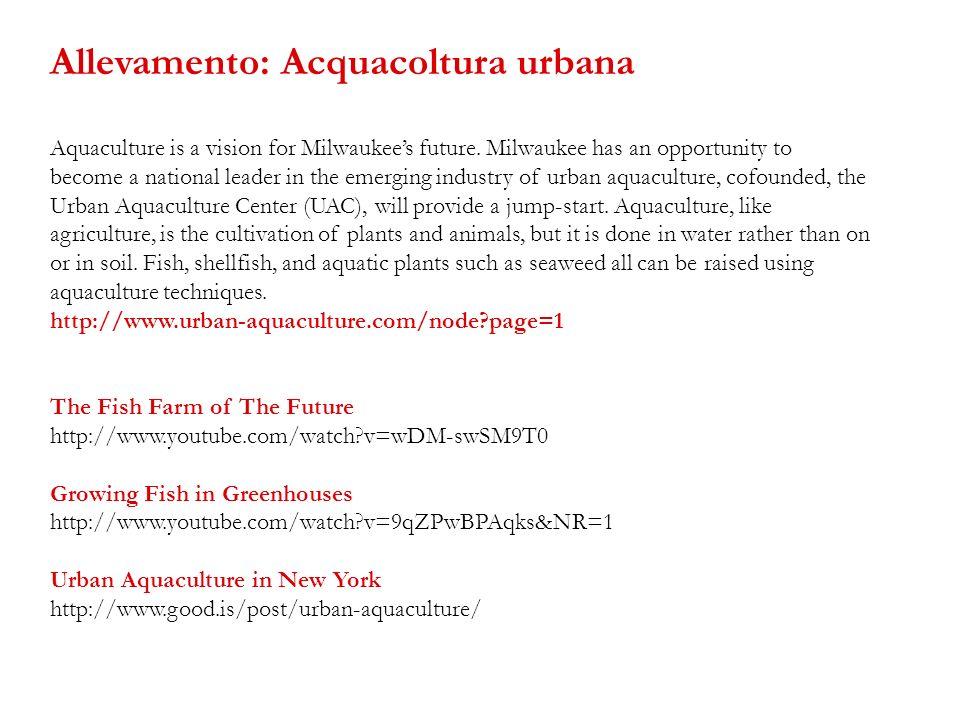 Allevamento: Acquacoltura urbana
