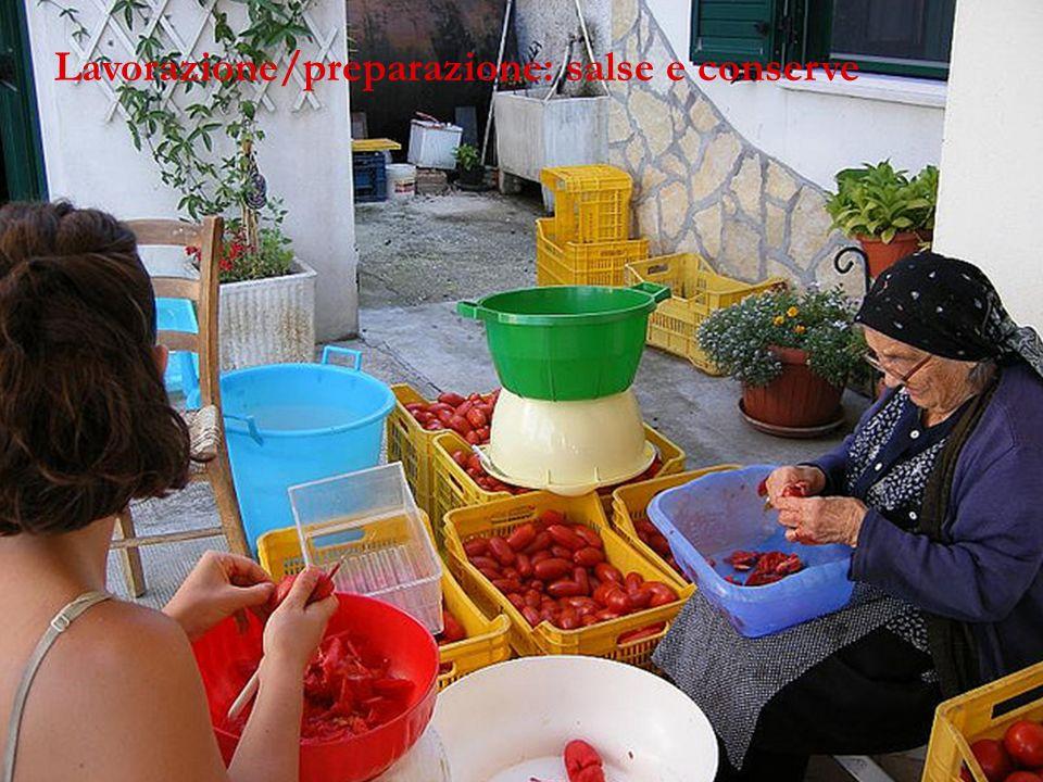 Lavorazione/preparazione: salse e conserve