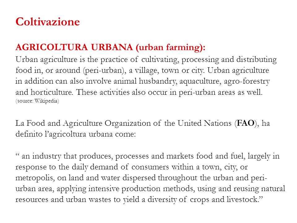 Coltivazione AGRICOLTURA URBANA (urban farming):