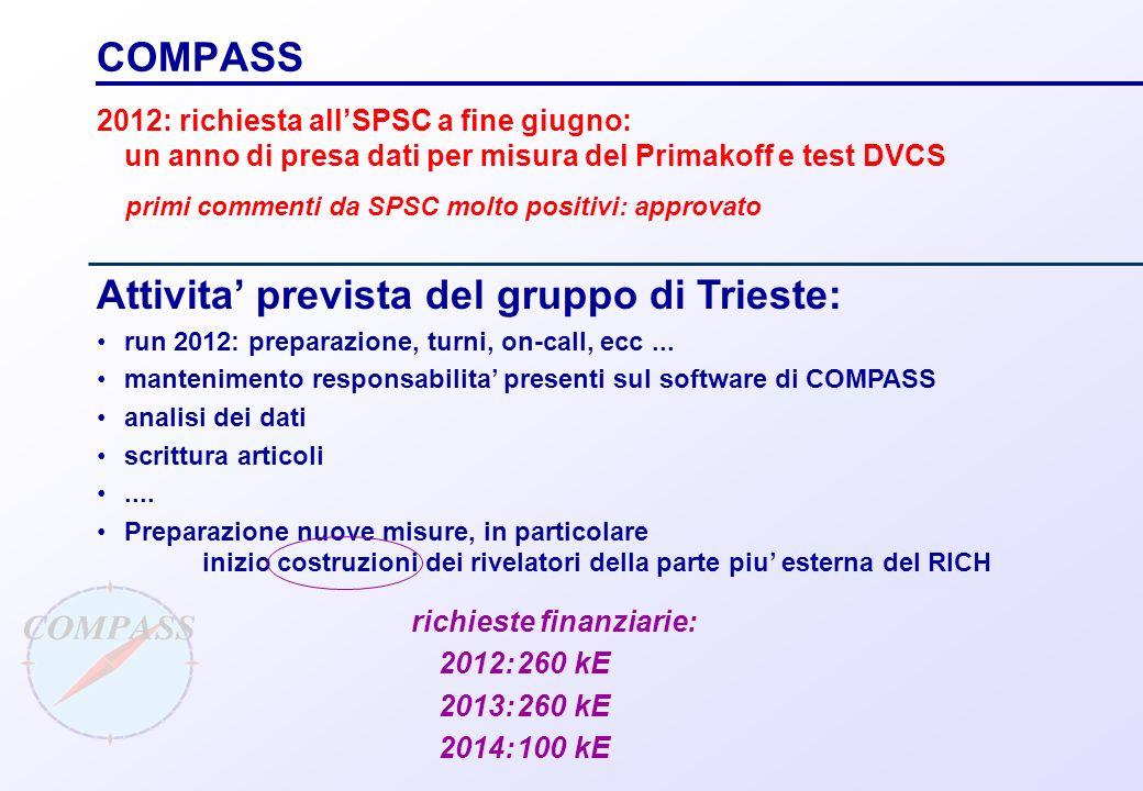 Attivita' prevista del gruppo di Trieste: