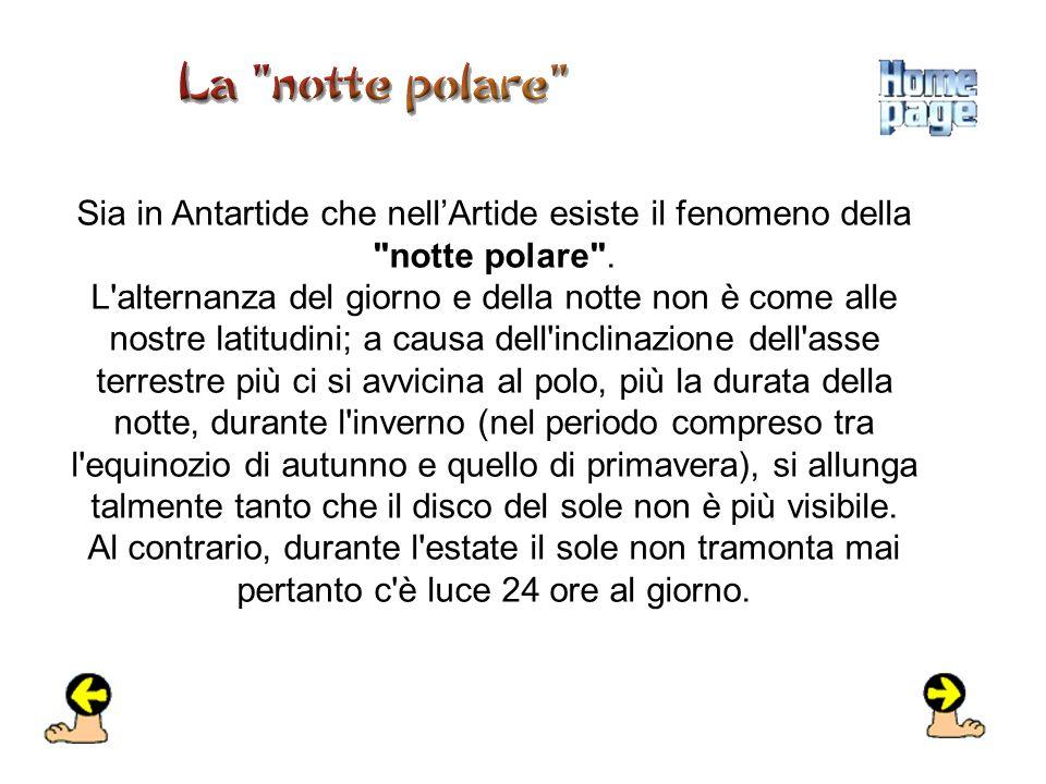 Sia in Antartide che nell'Artide esiste il fenomeno della notte polare .