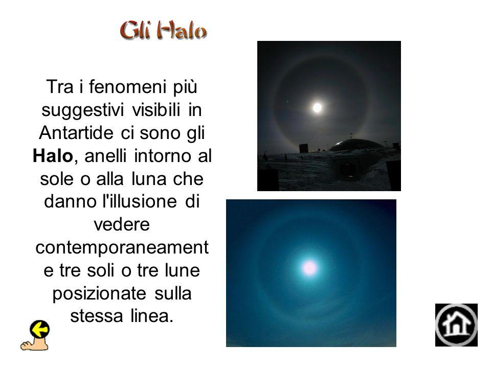 Tra i fenomeni più suggestivi visibili in Antartide ci sono gli Halo, anelli intorno al sole o alla luna che danno l illusione di vedere contemporaneamente tre soli o tre lune posizionate sulla stessa linea.