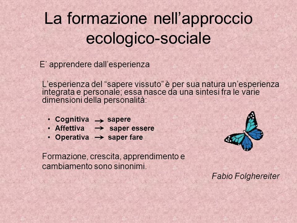 La formazione nell'approccio ecologico-sociale