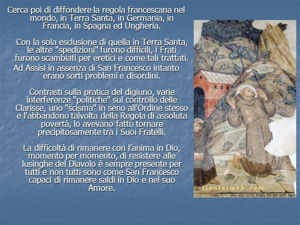 Cerca poi di diffondere la regola francescana nel mondo, in Terra Santa, in Germania, in Francia, in Spagna ed Ungheria. Con la sola esclusione di quella in Terra Santa, le altre spedizioni furono difficili, i Frati furono scambiati per eretici e come tali trattati.