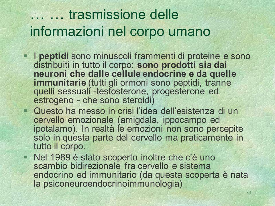 … … trasmissione delle informazioni nel corpo umano