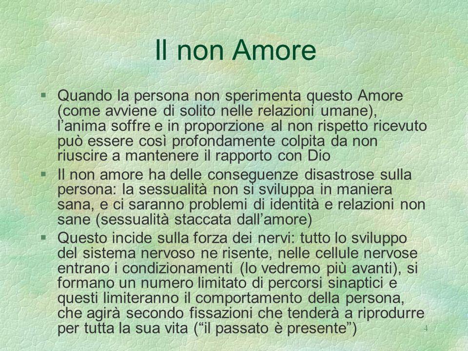Il non Amore