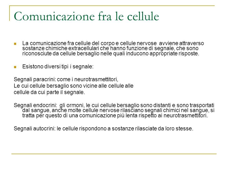 Comunicazione fra le cellule