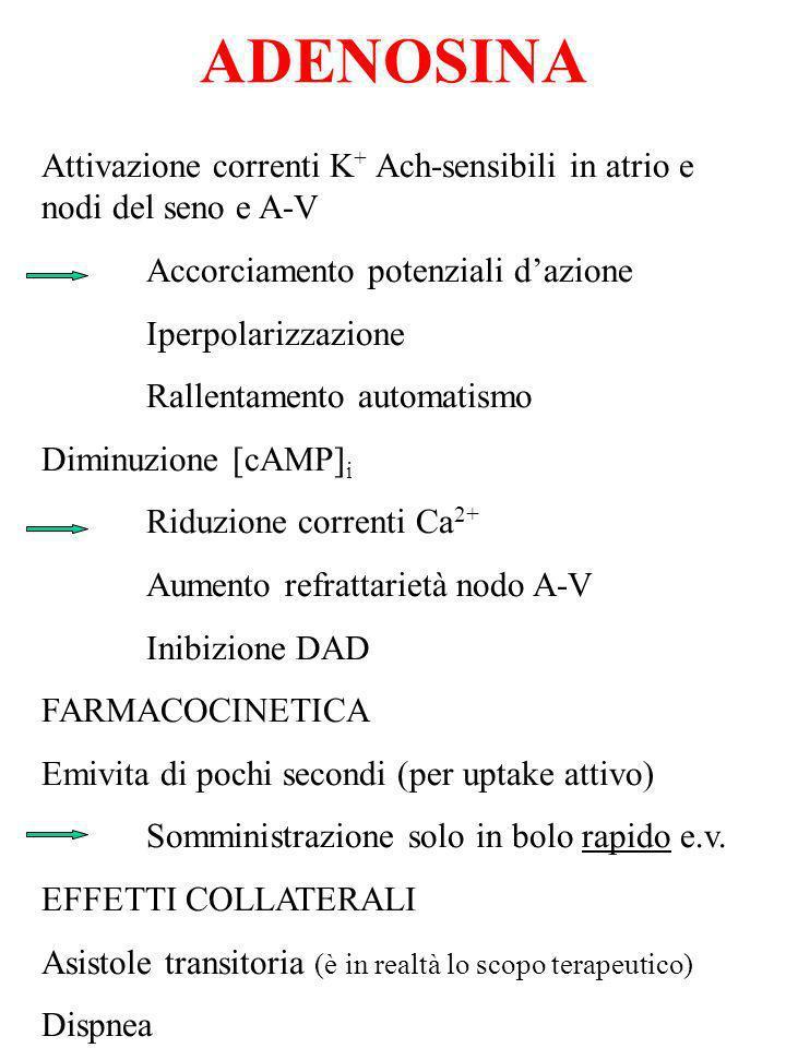 ADENOSINA Attivazione correnti K+ Ach-sensibili in atrio e nodi del seno e A-V. Accorciamento potenziali d'azione.