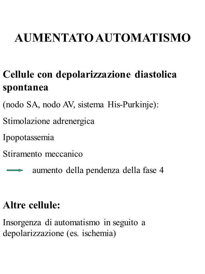 AUMENTATO AUTOMATISMO