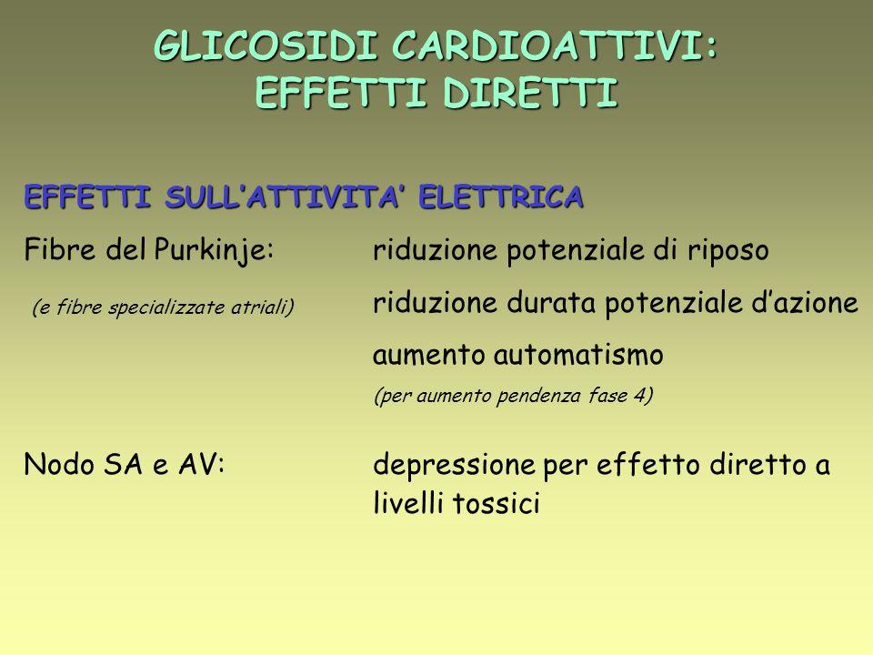 GLICOSIDI CARDIOATTIVI: EFFETTI DIRETTI