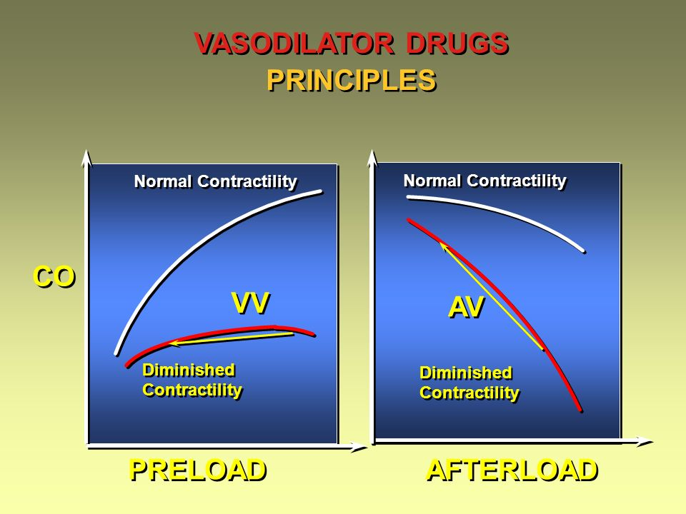 VASODILATOR DRUGS PRINCIPLES