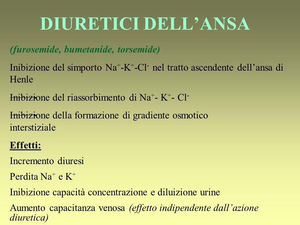 DIURETICI DELL'ANSA (furosemide, bumetanide, torsemide)