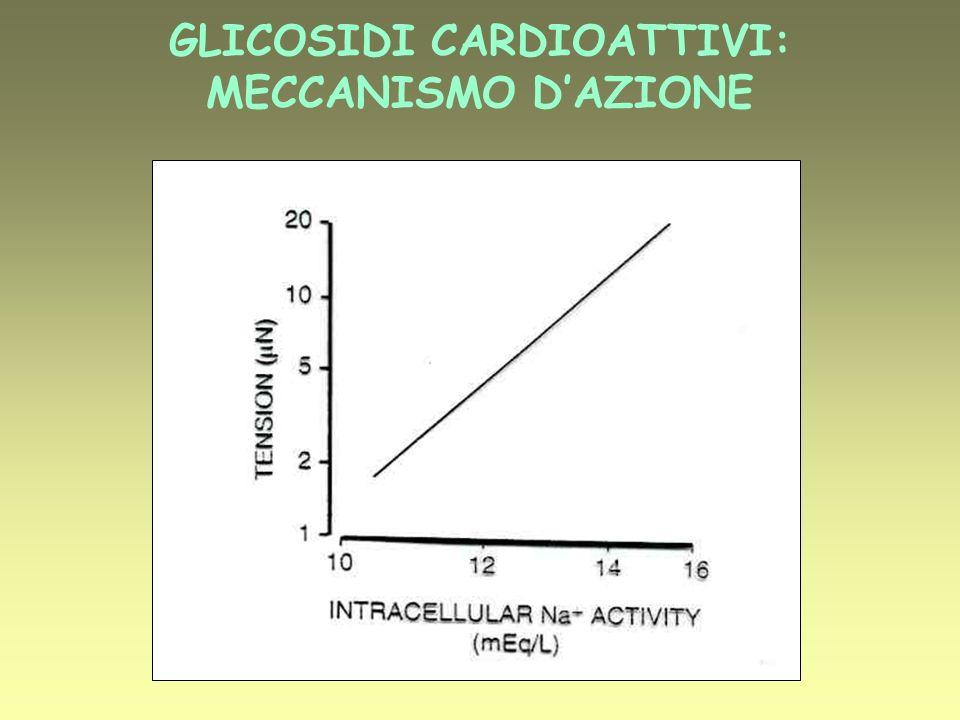 GLICOSIDI CARDIOATTIVI: MECCANISMO D'AZIONE