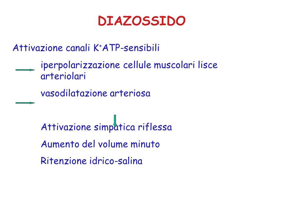 DIAZOSSIDO Attivazione canali K+ATP-sensibili