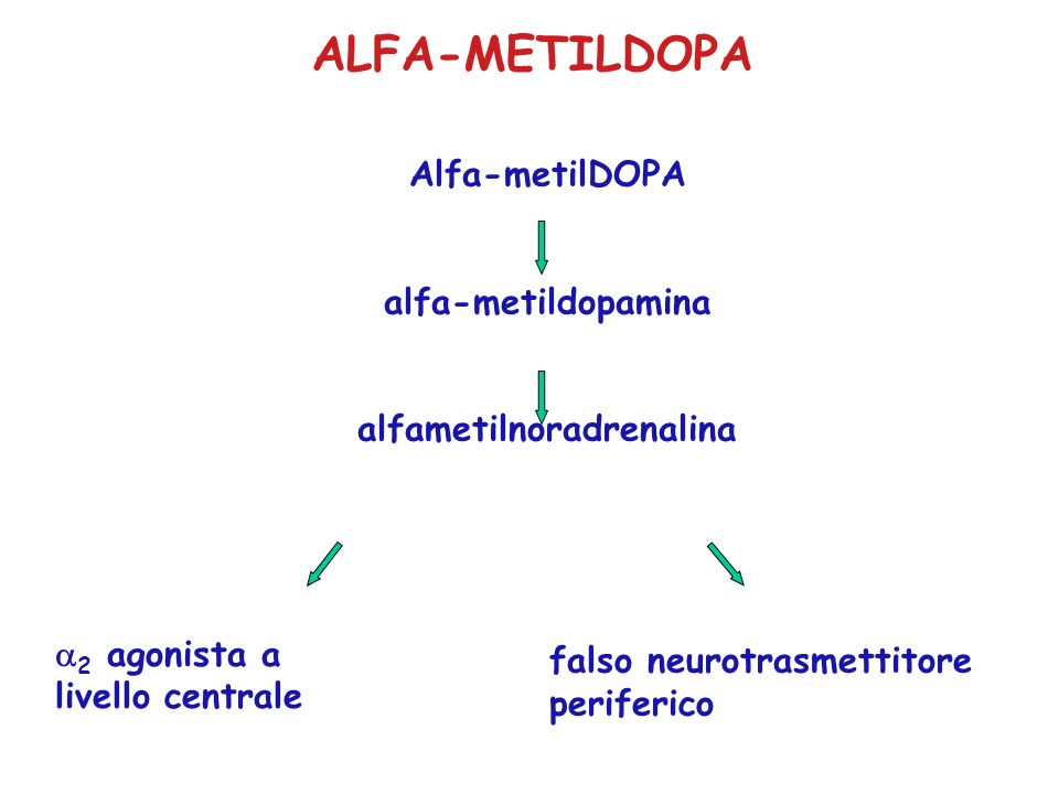 alfametilnoradrenalina