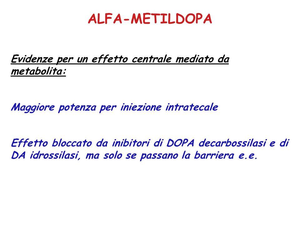 ALFA-METILDOPA Evidenze per un effetto centrale mediato da metabolita:
